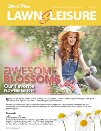 spring-summer-2019, Lawn and Leisure